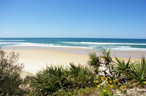 About Fraser Island -